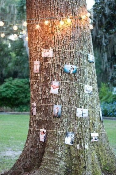 A large tree trunk decorated with small light and a selection of printed out wedding photos attached to the tree with some string and small wooden pegs